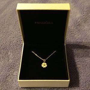 Never Worn Silver Pandora Flower Necklace